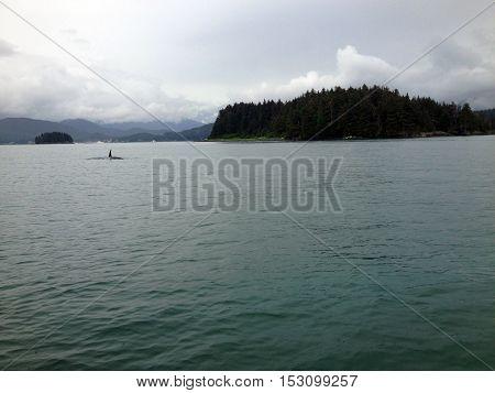 Scene of the Gastineau Channel near Juneau Alaska.