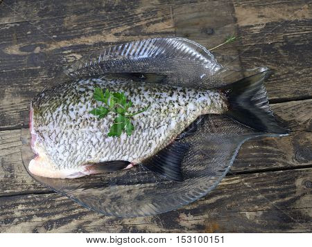 big fresh fish bream on glass plate