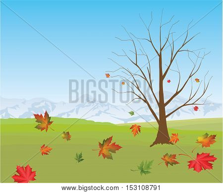 Illustration of a forest in autumn with leaves falling