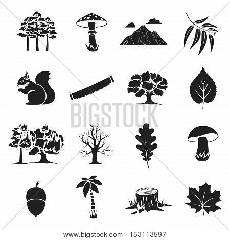 Forest set icons in black style. Big collection forest vector symbol stock