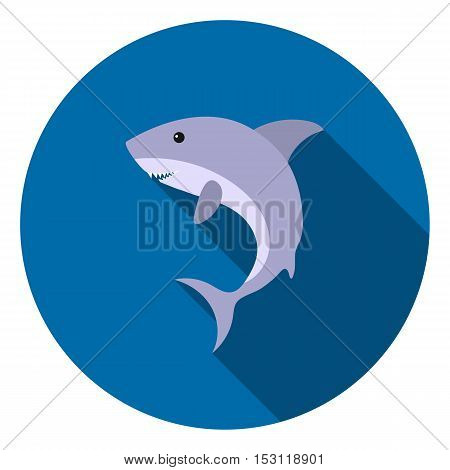 Shark icon in flat style isolated on white background. Animals symbol vector illustration.