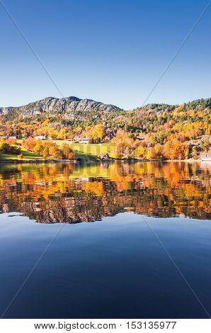 Vertical Coastal Norwegian Landscape