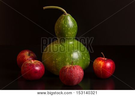 gourd and apples on a dark background, studio picture