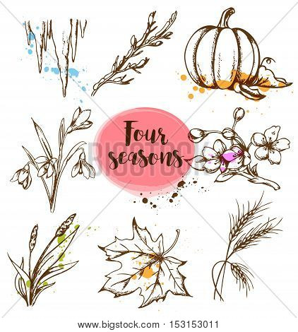 Set of vector hand drawn nature design elements in vintage style. Seasonal specifics.