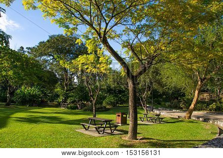 Photo of the Public city park in bright sunny summer day. Picnic place. Weekend time concept.