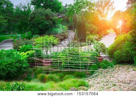 Winding road in a peaceful landscaped garden in the morning sun.