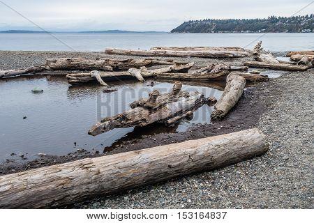 Piles of driftwood line the shore at Seahurst Beach Park in Burien Washington.