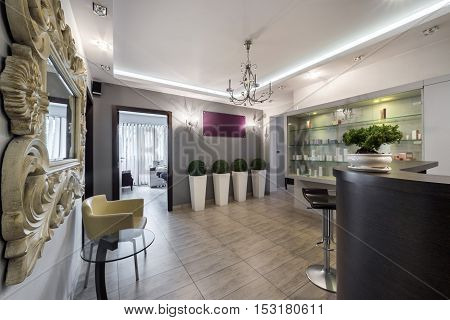 Reception or check-in area in elegant modern clinic