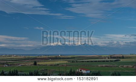 Nature scene with farmlands, green plantations and Olympus Mountain in the distance. Greece, Kalikratia