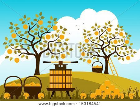 vector fruit press and baskets of apples in apple orchard
