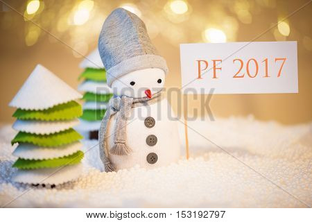 Cute festive snowman with PF 2017 sign Christmas lights in background