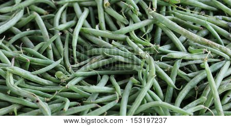 Background Of Ripe Green Beans
