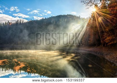 Lake Near The Foggy Pine Forest In Mountains