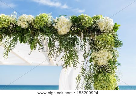 Collect flowers for the wedding arch. On the background of the sky and sea.