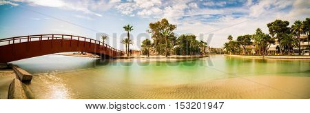 palm and  bridge in tropical river