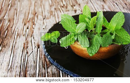 Fresh mint in a wooden bowl on the coal board, selective focus