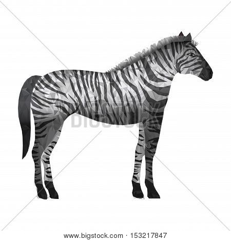 zebra wildlife animal with abstract design over white background. vector illustration