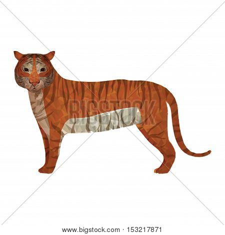 tiger wildlife animal with abstract design over white background. vector illustration