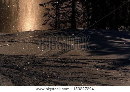 Beautiful winter view with snow with sunlight from below the mountain in the forest at the ski at sunset