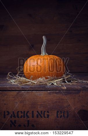 minimalistic fall background with single pumpkin on a wooden crate - for halloween, thanksgiving, autumn, farming or seasonal food cards, invites, calendars and other designs
