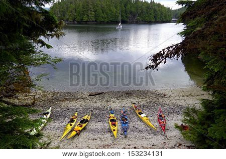 Several colorful sea kayaks pulled up on beach in sheltered cove with a sail boat at anchor in God's Pocket near Vancouver Island.