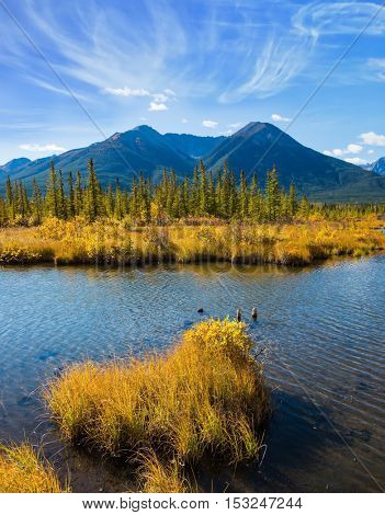 Canadian province of Alberta, the Rocky Mountains, Banff. Easy breeze on the lake Vermillon. Concept of ecotourism