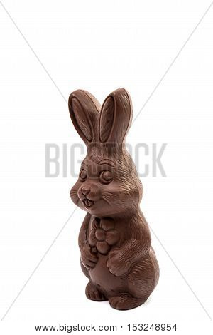 decoration chocolate bunny isolated on white background