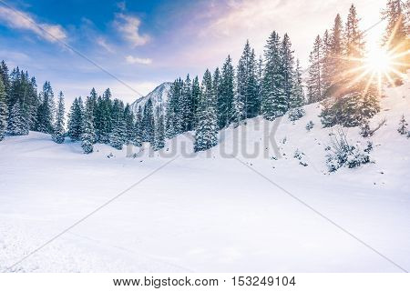 Winter sunshine in the forest - Lovely winter landscape with the evergreen fir forests warmed up by the orange sun and its rays while everything is covered in snow. Image taken in Ehrwald Austria.