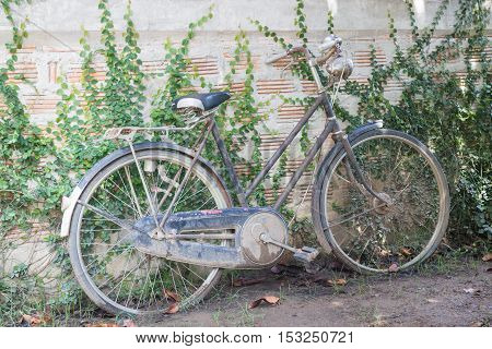 Vintage bicycle decorated on old wall stock photo