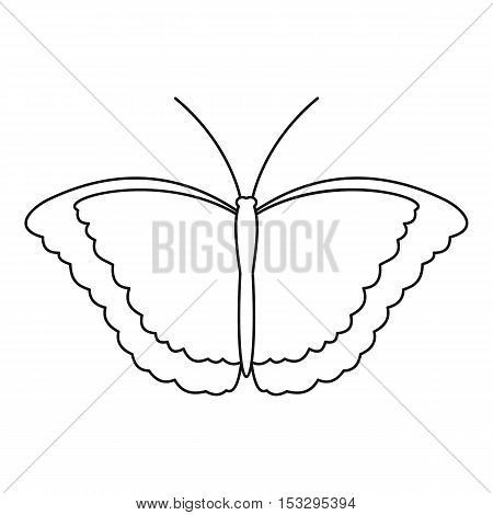 Butterfly scoop icon. Outline illustration of butterfly scoop vector icon for web