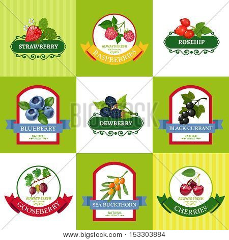 Wild and organically grown berries fresh berries labels flat icons collection for healthy diet isolated vector illustration