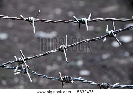 Close up Barbed Wire Fence line abstract style