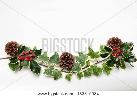 Festive Sprig Of Holly And Ivy Leaves With Berries Isolated On A White Background