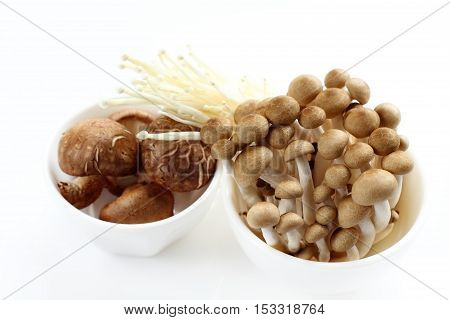 Shiitake is mushrooms for raw food on isolated.