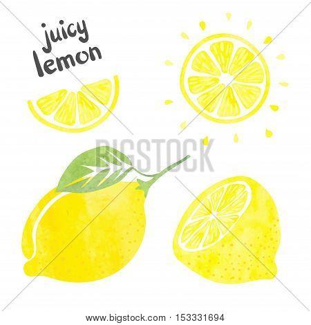 Lemon set. Vector  collection of fresh lemon fruits.
