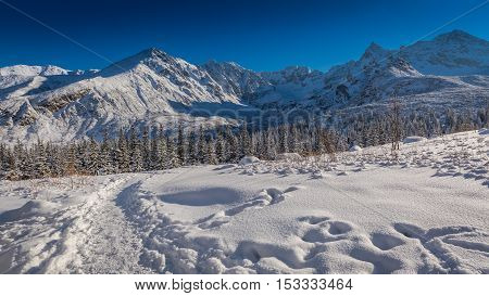 Snowy Mountain Trail In The Tatra Mountains, Poland