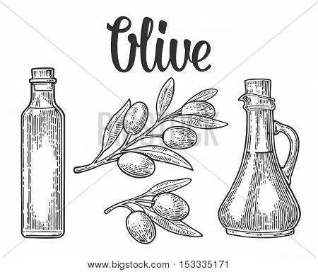 Bootle glass of Olive oil with cork stopper and branch with leaves. Hand drawn design element. Vintage black vector engraving illustration for logotype poster web. Isolated on white background.
