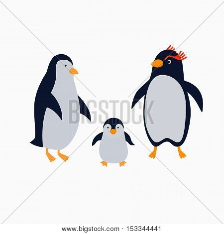 Family of penguins. Illustration for children in flat style