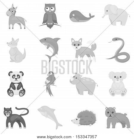 Animals set icons in monochrome style. Big collection of animals vector symbol stock