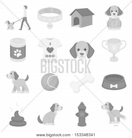 Dog equipment set icons in monochrome style. Big collection of dog equipment vector symbol stock