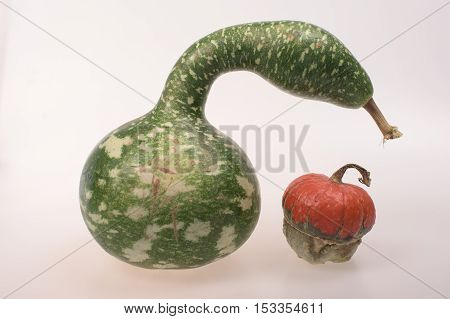 Two different calabashes on a white backgraund