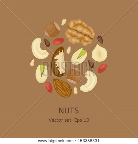 Nuts composed in circle shape. Cashew, almond, brazil nut, pistachio, hazelnut, pine nuts, walnut. Information about proper eating nuts