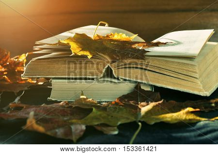 Autumn still life -old books among the dry autumn leaves and bright sunlight. Focus at the book's spine. Autumn retro still life with autumn leaves. Autumn still life with old worn books