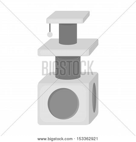 Cat house icon in monochrome style isolated on white background. Cat symbol vector illustration.