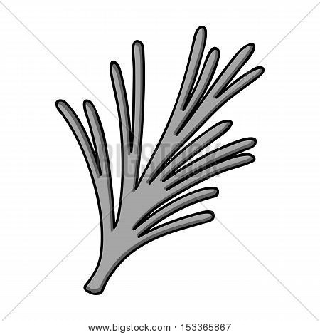 Rosemary icon in monochrome style isolated on white background. Herb an spices symbol vector illustration.