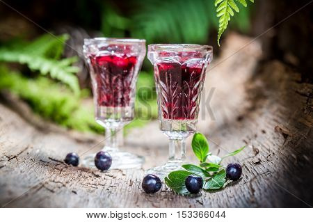 Tasty liqueur with alcohol and blueberries on old bark