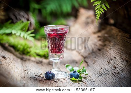 Fresh liqueur with alcohol and blueberries on old bark