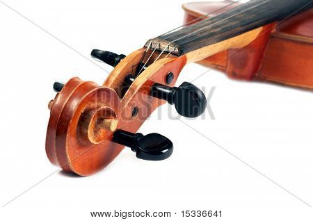 Part of Violin isolated on white