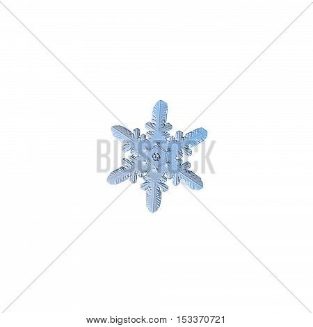 Snowflake isolated on white background: macro photo of real snow crystal. This is small snowflake with rare and unusual pattern of heart-like elements, connected to corners of central hexagon.