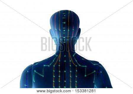 Medical acupuncture model of human isolated on white background